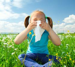 shutterstock_77705698 allergens 250