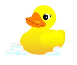 Duck 250