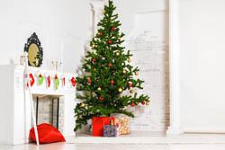 christmas tree 250